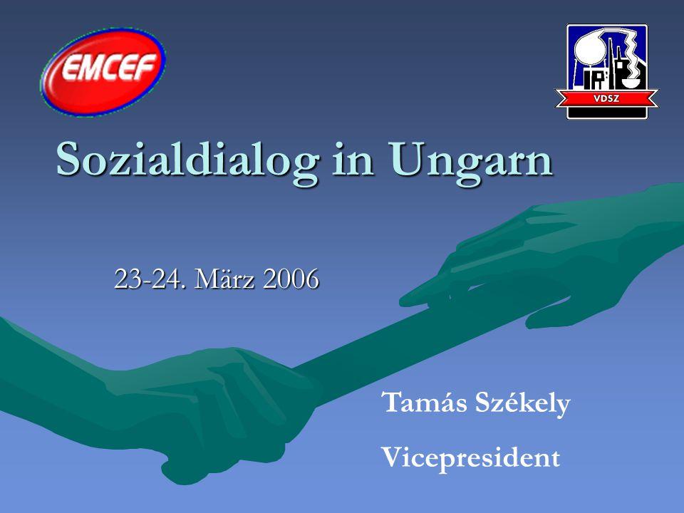 Sozialdialog in Ungarn 23-24. März 2006 Tamás Székely Vicepresident