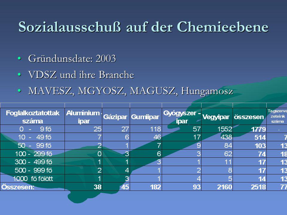 Sozialausschuß auf der Chemieebene Gründunsdate: 2003Gründunsdate: 2003 VDSZ und ihre BrancheVDSZ und ihre Branche MAVESZ, MGYOSZ, MAGUSZ, HungamoszMAVESZ, MGYOSZ, MAGUSZ, Hungamosz