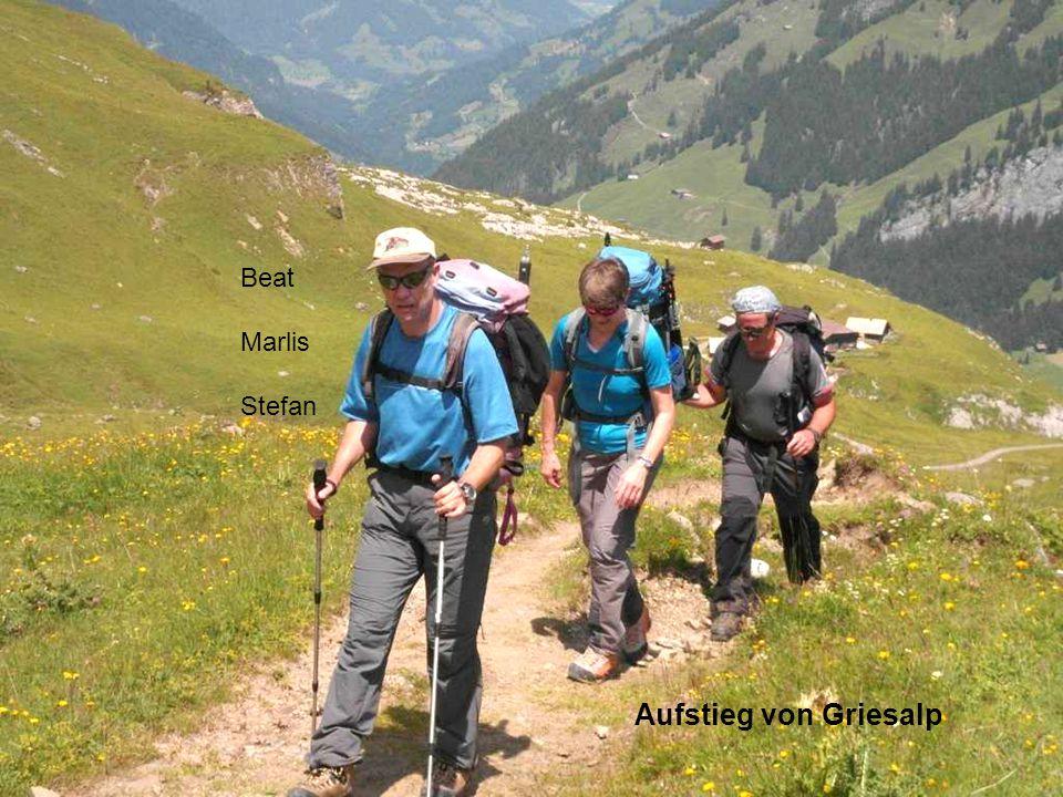 Details zum Tourenbericht Postautofahrt von Reichenbach zur Griesalp Hüttenaufstieg von 1360 Hm zur Blüemlisalphütte (2834m) in 4 Std 1. Tag