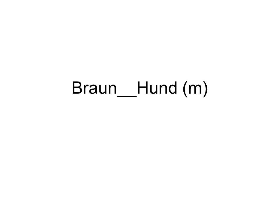 Braun__Hund (m)