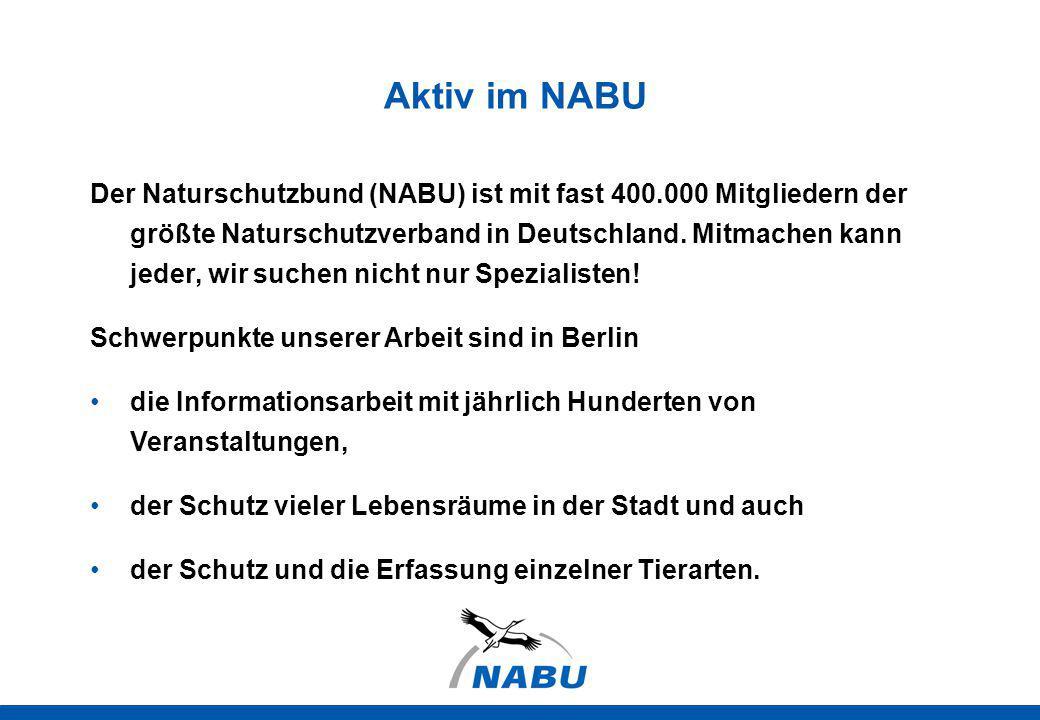Der Naturschutzbund (NABU) ist mit fast 400.000 Mitgliedern der größte Naturschutzverband in Deutschland. Mitmachen kann jeder, wir suchen nicht nur S