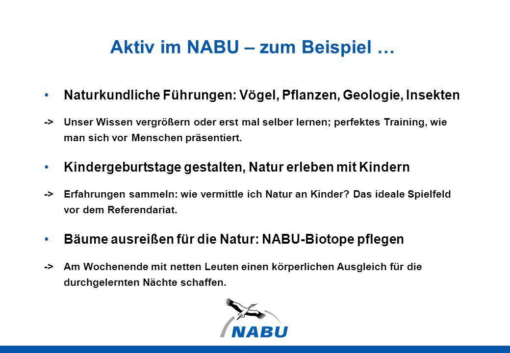 Aktiv im NABU – zum Beispiel … Naturkundliche Führungen: Vögel, Pflanzen, Geologie, Insekten -> Unser Wissen vergrößern oder erst mal selber lernen; p