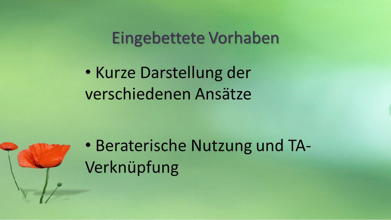 Eingebettete Vorhaben Kurze Darstellung der verschiedenen Ansätze Beraterische Nutzung und TA- Verknüpfung