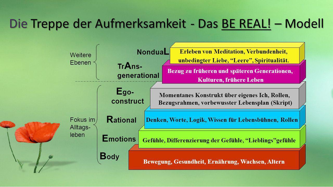 B ody E motions R ational E go- construct Tr A ns- generational Nondua L Fokus im Alltags- leben Weitere Ebenen Bewegung, Gesundheit, Ernährung, Wachs