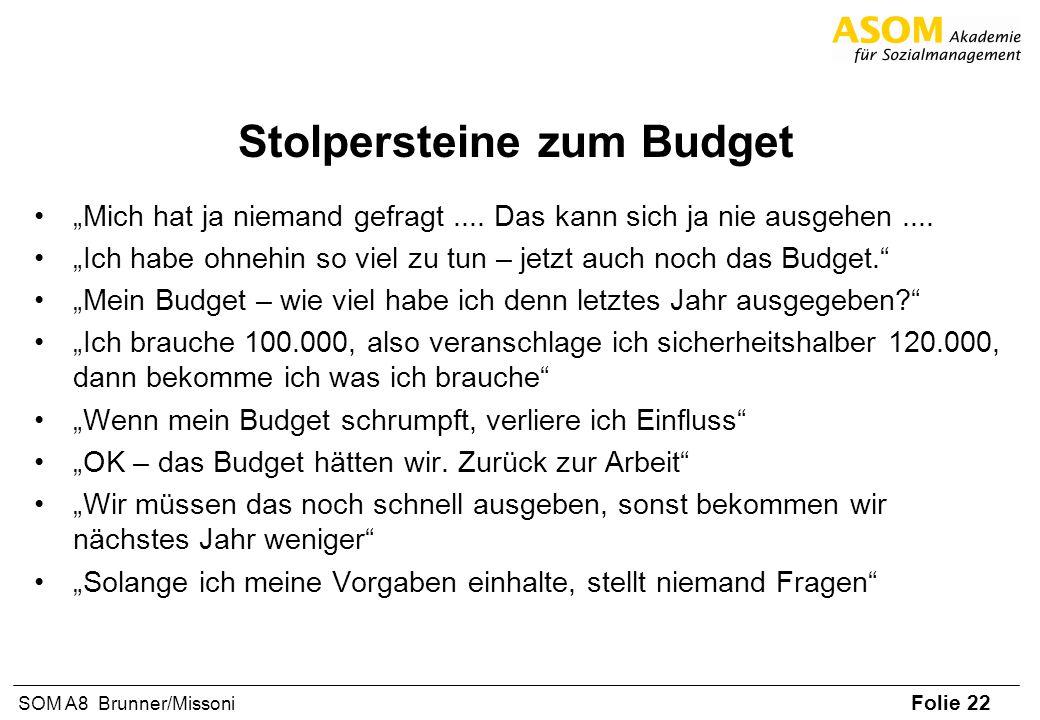 Folie 22 SOM A8 Brunner/Missoni Stolpersteine zum Budget Mich hat ja niemand gefragt.... Das kann sich ja nie ausgehen.... Ich habe ohnehin so viel zu