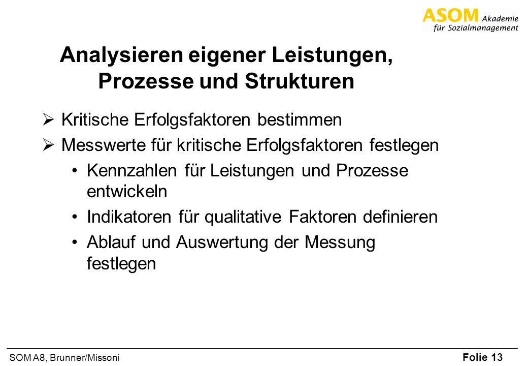 Folie 13 SOM A8, Brunner/Missoni Analysieren eigener Leistungen, Prozesse und Strukturen Kritische Erfolgsfaktoren bestimmen Messwerte für kritische E