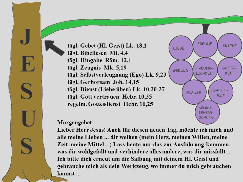 tägl. Gebet (Hl. Geist) Lk. 18,1 tägl. Bibellesen Mt.
