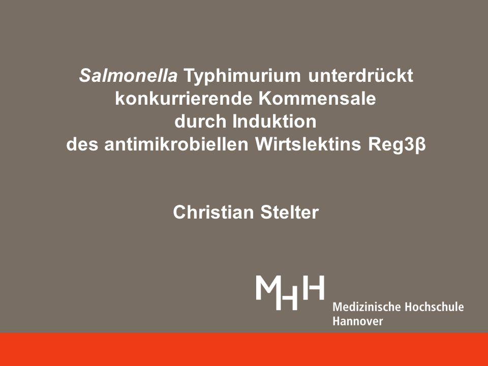 Stringentere ökologische Bedingungen Intakte Darmflora: kein Streptomycin Reg3β – Vorbehandlung Reg3β erhöht die STm Besiedlung in einer komplexen Darmflora