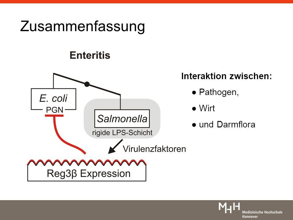 Zusammenfassung Interaktion zwischen: Pathogen, Wirt und Darmflora