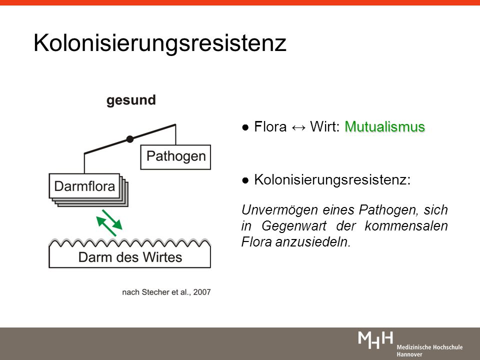 Kolonisierungsresistenz Mutualismus Flora Wirt: Mutualismus Kolonisierungsresistenz: Unvermögen eines Pathogen, sich in Gegenwart der kommensalen Flora anzusiedeln.