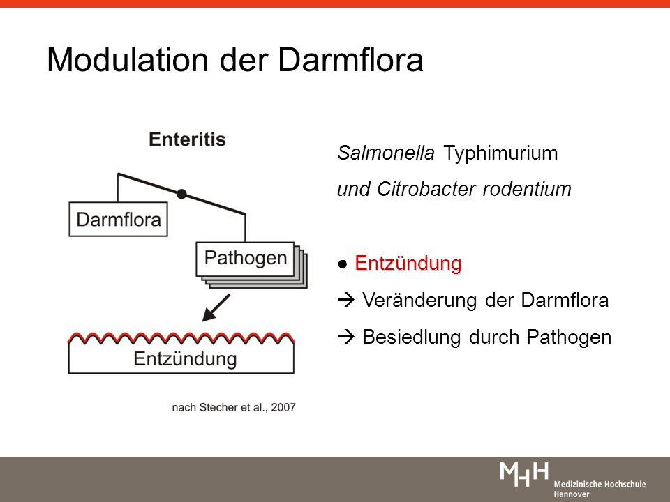 Hypothetische Mechanismen Pathogenförderung Nährstoff-Hypothese Kommensalenunterdrückung unterschiedliche Abtötung