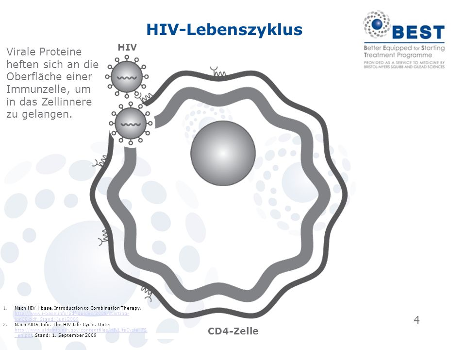 4 HIV-Lebenszyklus HIV CD4-Zelle Virale Proteine heften sich an die Oberfläche einer Immunzelle, um in das Zellinnere zu gelangen. 1.Nach HIV i-base.