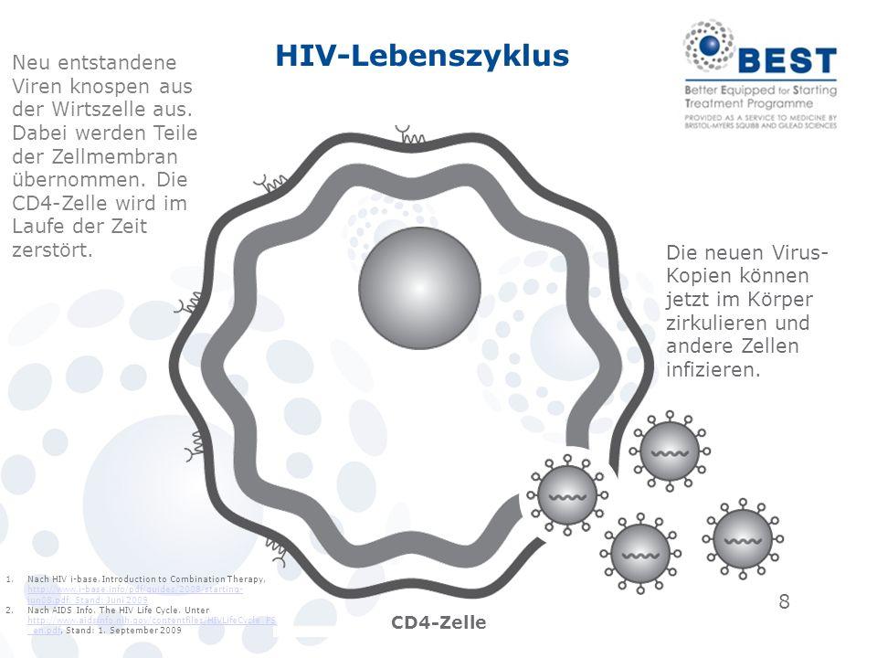 8 CD4-Zelle Neu entstandene Viren knospen aus der Wirtszelle aus. Dabei werden Teile der Zellmembran übernommen. Die CD4-Zelle wird im Laufe der Zeit
