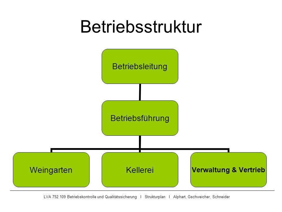 LVA 752.109 Betriebskontrolle und Qualitätssicherung I Strukturplan I Alphart, Gschweicher, Schneider Betriebsstruktur Betriebsleitung Betriebsführung