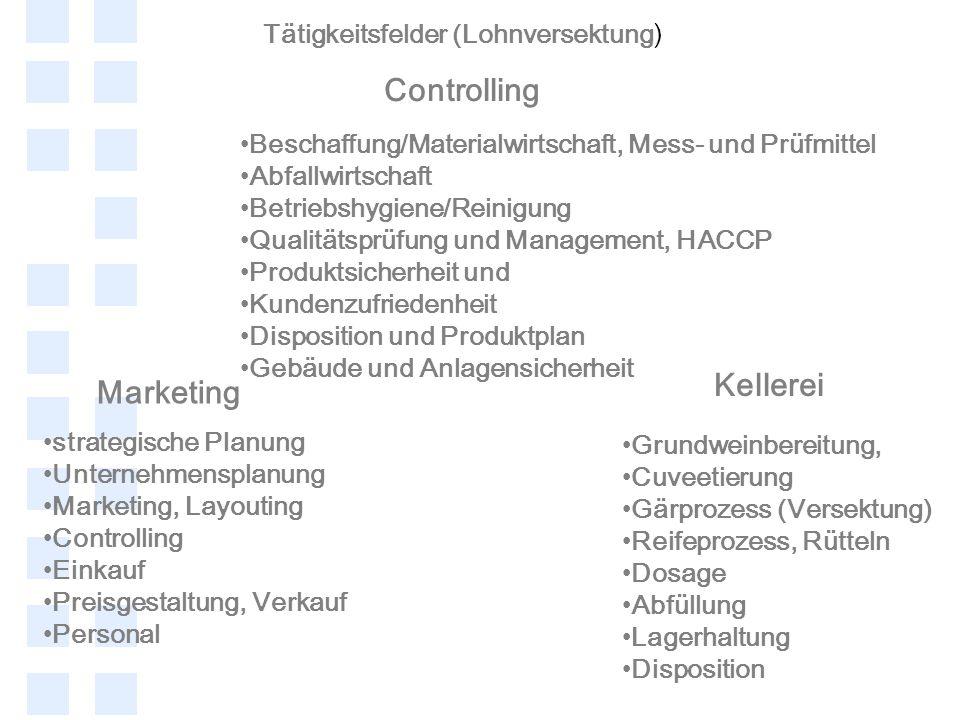 Tätigkeitsfelder (Lohnversektung) strategische Planung Unternehmensplanung Marketing, Layouting Controlling Einkauf Preisgestaltung, Verkauf Personal