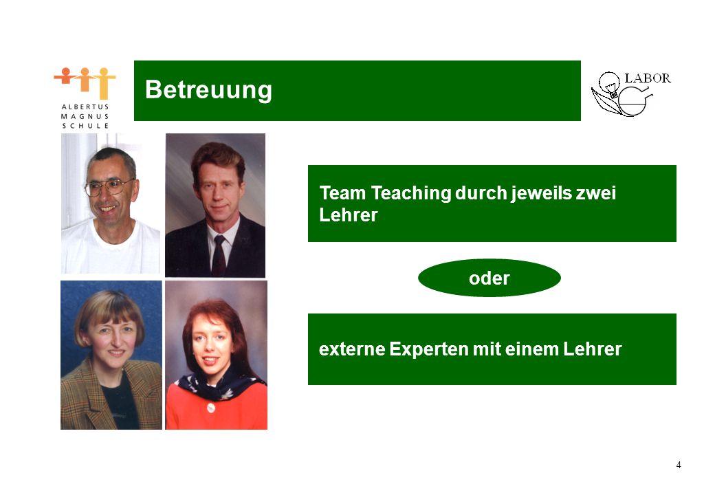 4 Naturwissenschaftliches Labor Team Teaching durch jeweils zwei Lehrer Betreuung externe Experten mit einem Lehrer oder