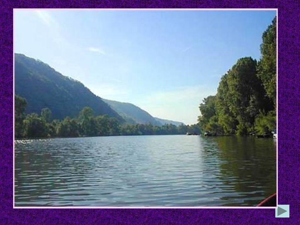 Welcher Fluss ist der längste in Deutschland? die Spree der Rhein der Main