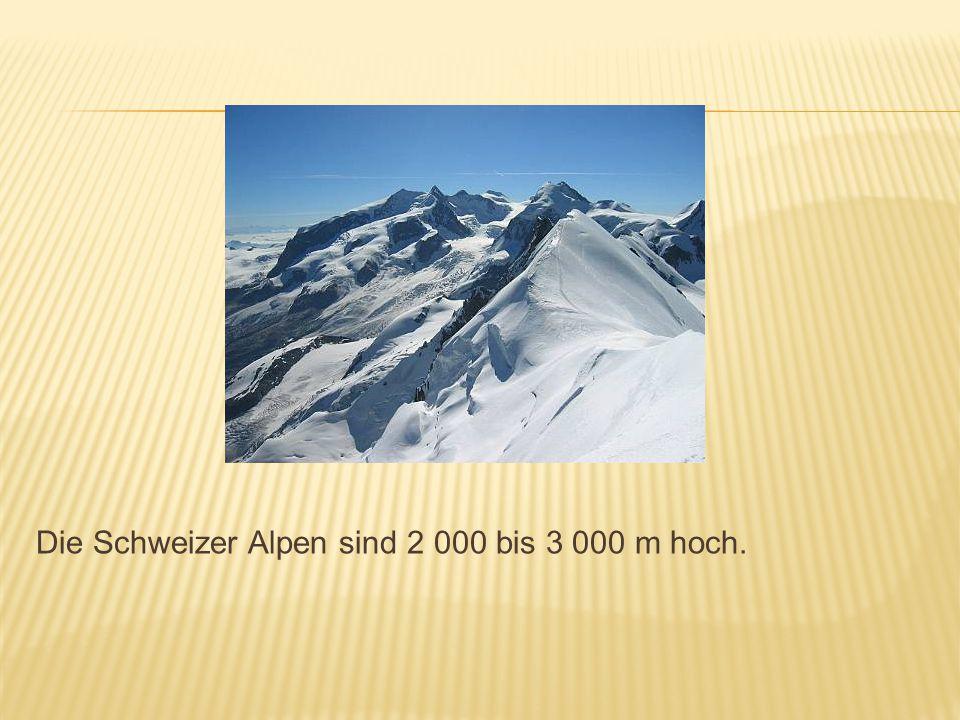 Der höchste Berg ist das Matterhorn mit 4478 Metern.