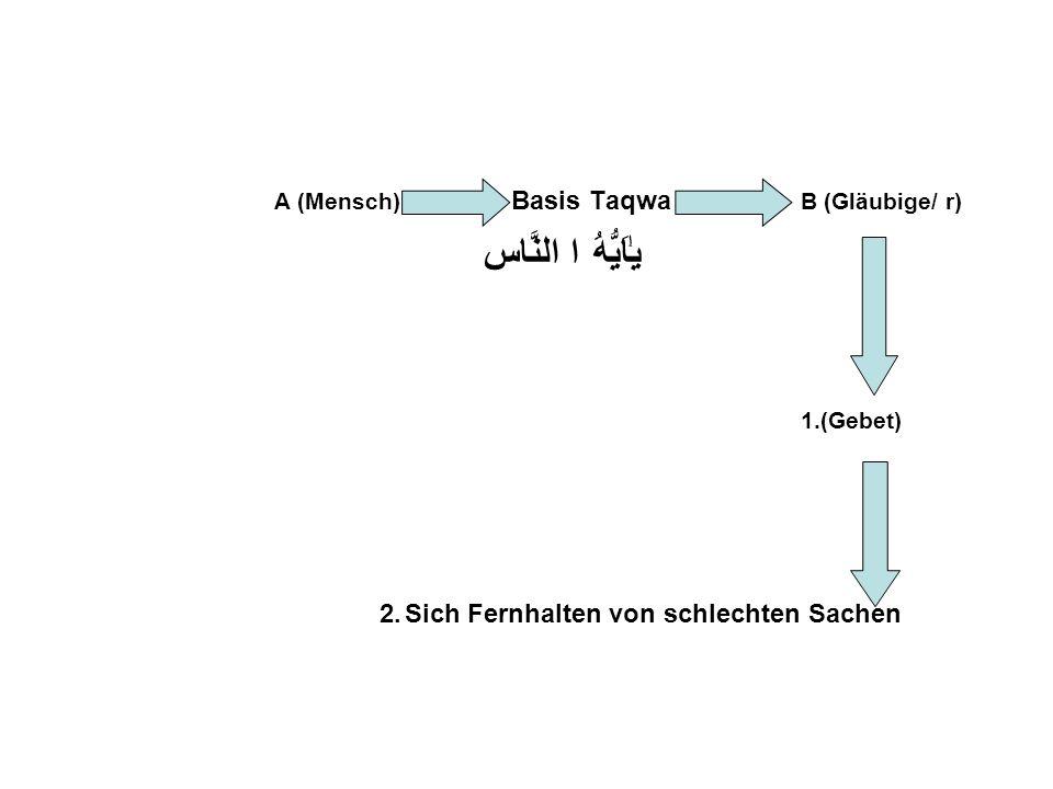 A (Mensch) Basis Taqwa B (Gläubige/ r) ا النَّاسيٰۤاَيُّهَُ 1.(Gebet) 2. Sich Fernhalten von schlechten Sachen