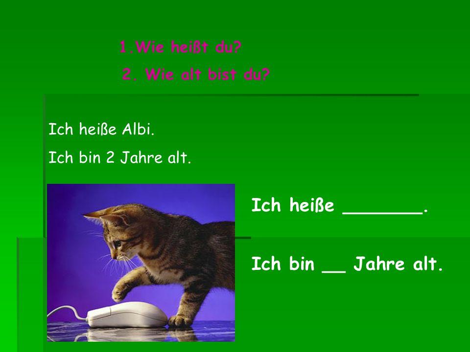 1.Wie heißt du? Ich heiße _______. 2. Wie alt bist du? Ich bin __ Jahre alt. Ich heiße Albi. Ich bin 2 Jahre alt.