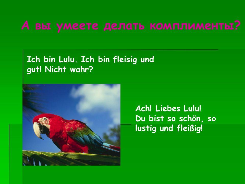 Ich bin Lulu. Ich bin fleisig und gut! Nicht wahr? Ach! Liebes Lulu! Du bist so schön, so lustig und fleißig! А вы умеете делать комплименты?