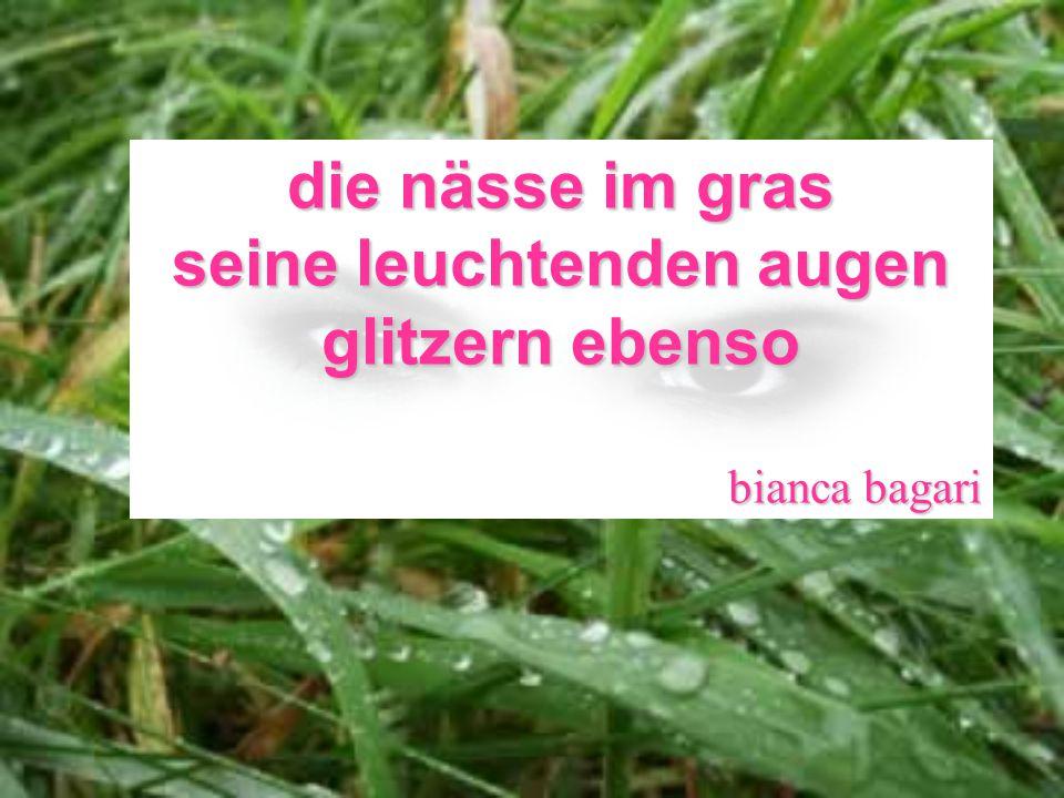 die nässe im gras seine leuchtenden augen glitzern ebenso bianca bagari
