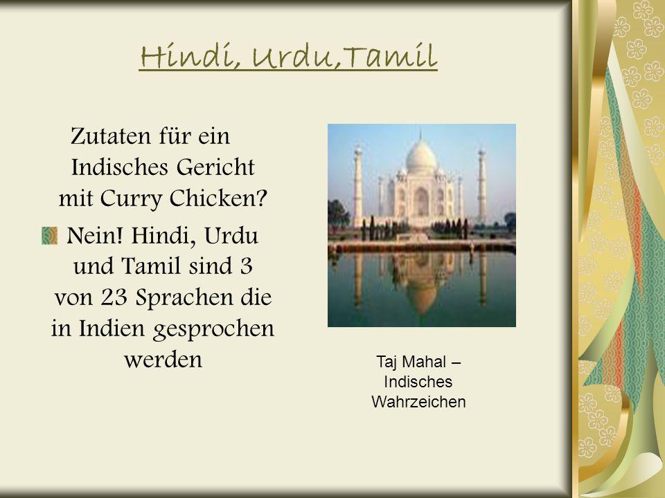 Hindi, Urdu,Tamil Zutaten für ein Indisches Gericht mit Curry Chicken.
