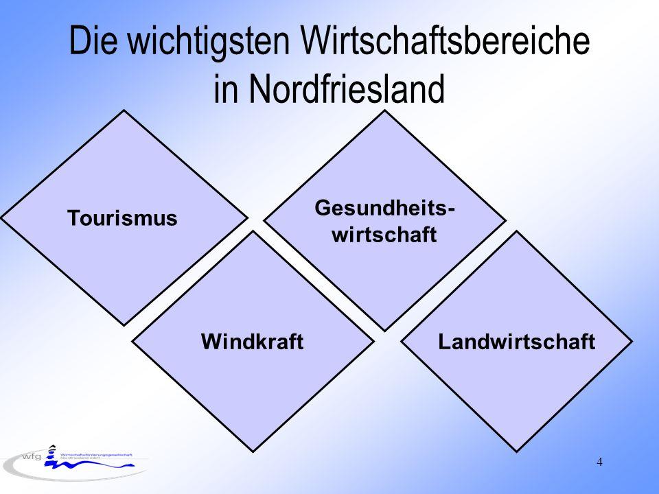 4 Die wichtigsten Wirtschaftsbereiche in Nordfriesland Tourismus Windkraft Gesundheits- wirtschaft Landwirtschaft