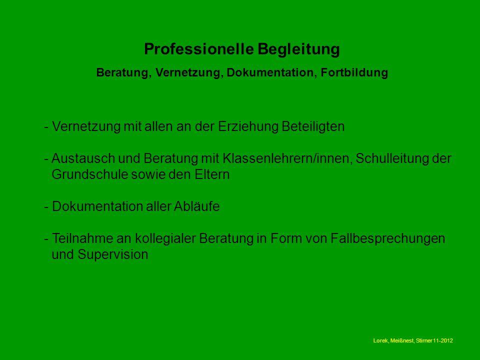 Professionelle Begleitung Beratung, Vernetzung, Dokumentation, Fortbildung - Vernetzung mit allen an der Erziehung Beteiligten - Austausch und Beratun