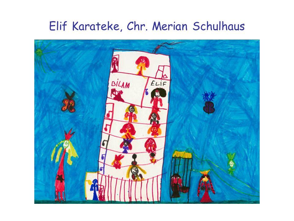 Elif Karateke, Chr. Merian Schulhaus