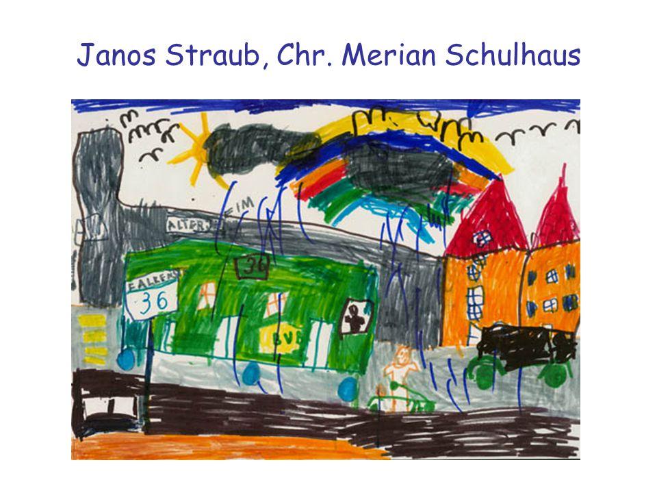 Janos Straub, Chr. Merian Schulhaus