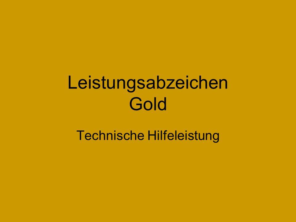 Leistungsabzeichen Gold Technische Hilfeleistung