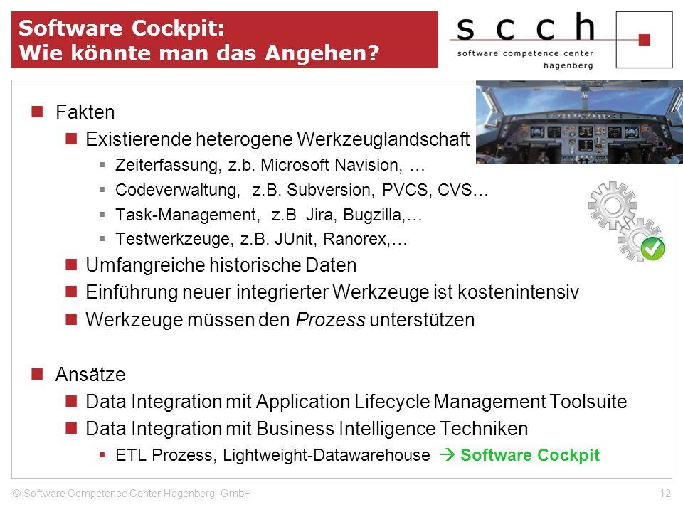 Software Cockpit: Wie könnte man das Angehen? Fakten Existierende heterogene Werkzeuglandschaft Zeiterfassung, z.b. Microsoft Navision, … Codeverwaltu