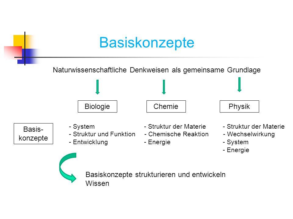 Basiskonzepte Naturwissenschaftliche Denkweisen als gemeinsame Grundlage BiologieChemiePhysik Basis- konzepte - System - Struktur der Materie - Strukt