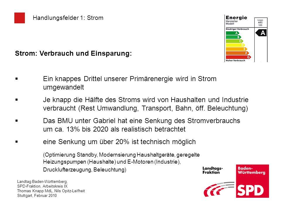 Landtag Baden-Württemberg, SPD-Fraktion, Arbeitskreis IX Thomas Knapp MdL, Nils Opitz-Leifheit Stuttgart, Februar 2010 Handlungsfelder 1: Strom Strom: