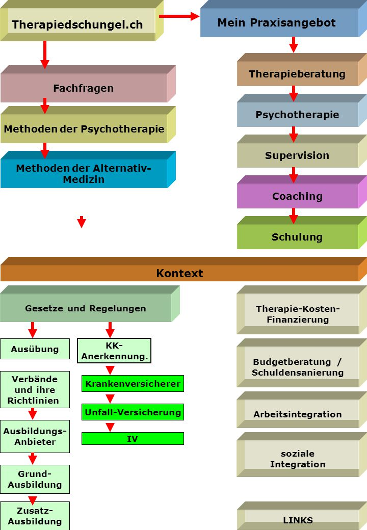 Methoden der Psychotherapie Fachfragen Gesetze und Regelungen Ausübung Grund- Ausbildung Zusatz- Ausbildung Krankenversicherer Kontext KK- Anerkennung.