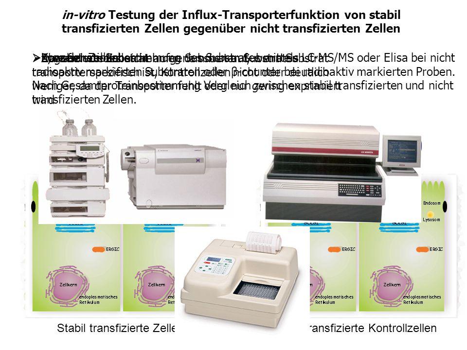 Stabil transfizierte Zellen Zugabe von Substrat Nicht transfizierte Kontrollzellen transfizierte Zellen nehmen Substrat auf, wenn Substrat transporter