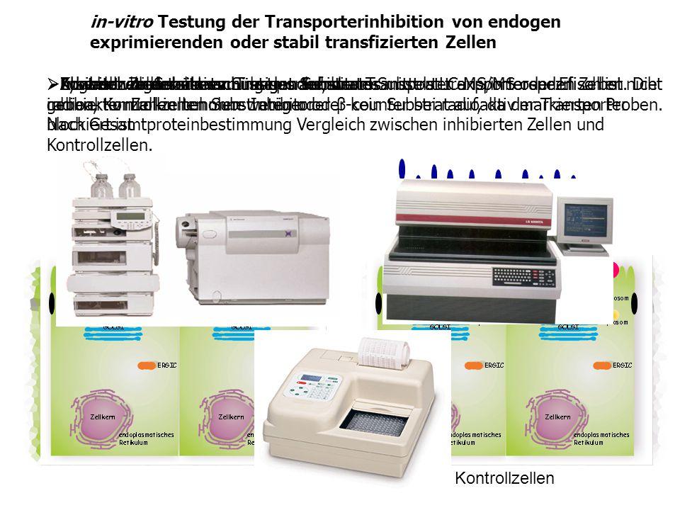 in-vitro Testung der Transporterinhibition von endogen exprimierenden oder stabil transfizierten Zellen Inhibitor zu den den zu untersuchenden Transpo