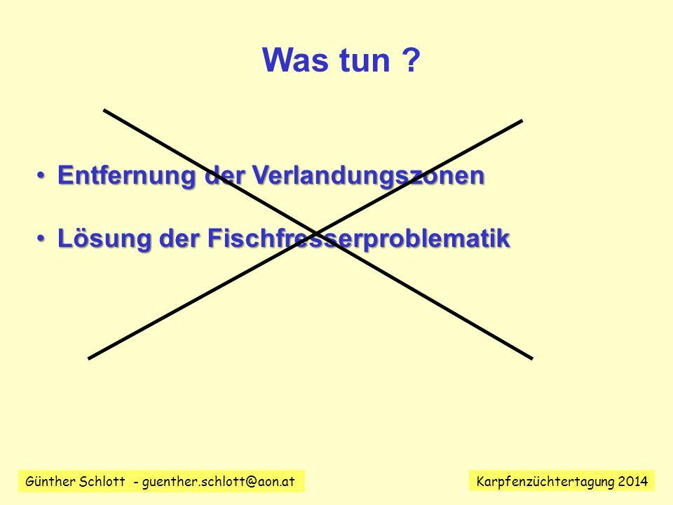 Günther Schlott - guenther.schlott@aon.at Karpfenzüchtertagung 2014 Was tun .