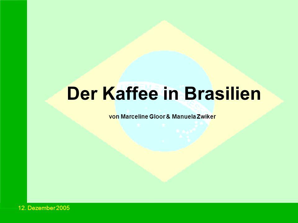 12. Dezember 2005 Der Kaffee in Brasilien von Marceline Gloor & Manuela Zwiker