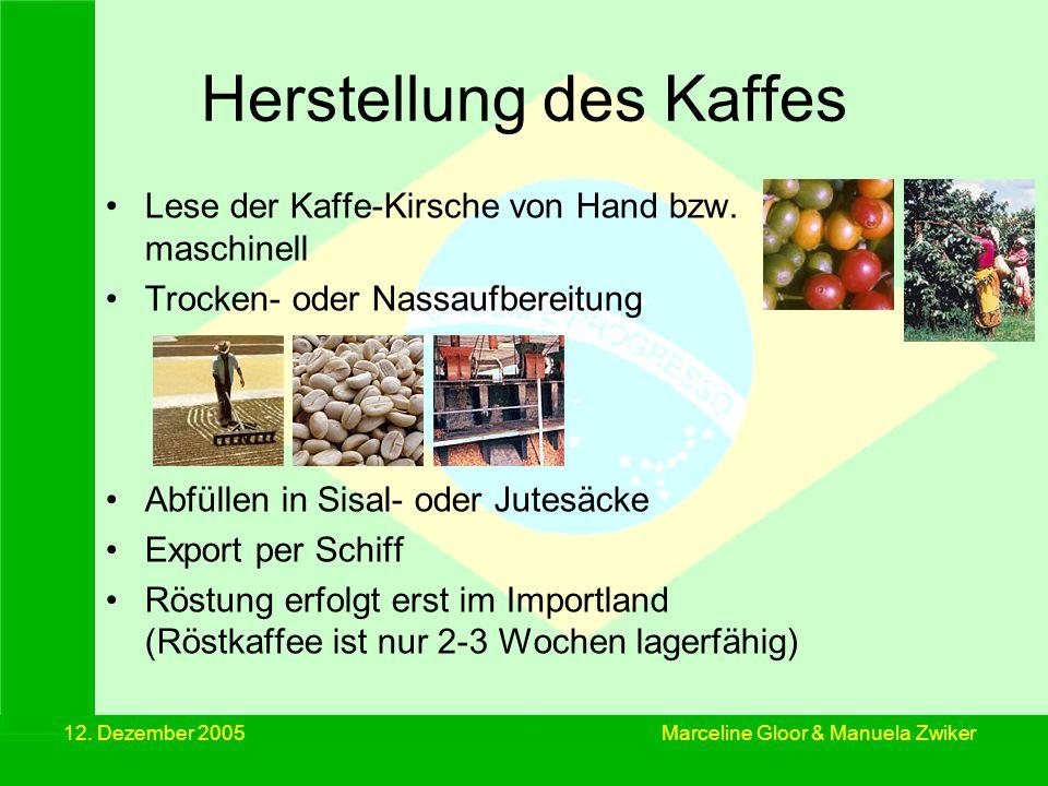 12. Dezember 2005 Herstellung des Kaffes Lese der Kaffe-Kirsche von Hand bzw. maschinell Trocken- oder Nassaufbereitung Abfüllen in Sisal- oder Jutesä
