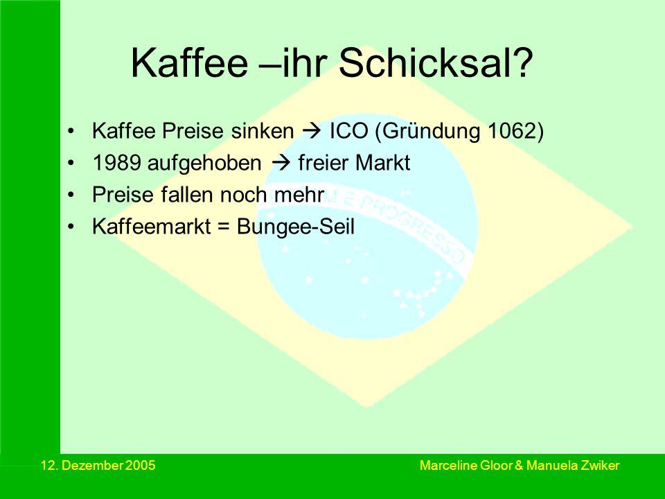12. Dezember 2005 Kaffee –ihr Schicksal? Kaffee Preise sinken ICO (Gründung 1062) 1989 aufgehoben freier Markt Preise fallen noch mehr Kaffeemarkt = B
