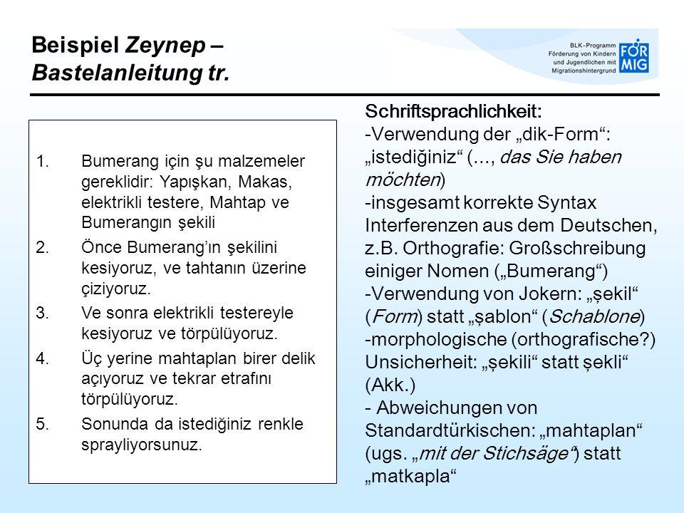 Beispiel Zeynep – Bastelanleitung tr.