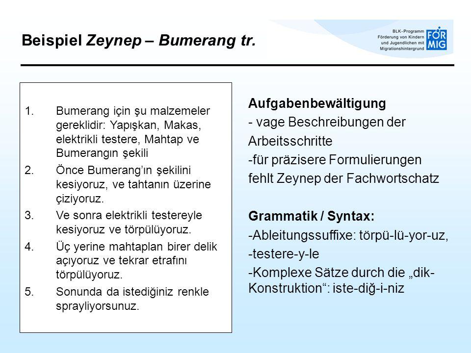 Beispiel Zeynep – Bumerang tr. Aufgabenbewältigung - vage Beschreibungen der Arbeitsschritte -für präzisere Formulierungen fehlt Zeynep der Fachwortsc