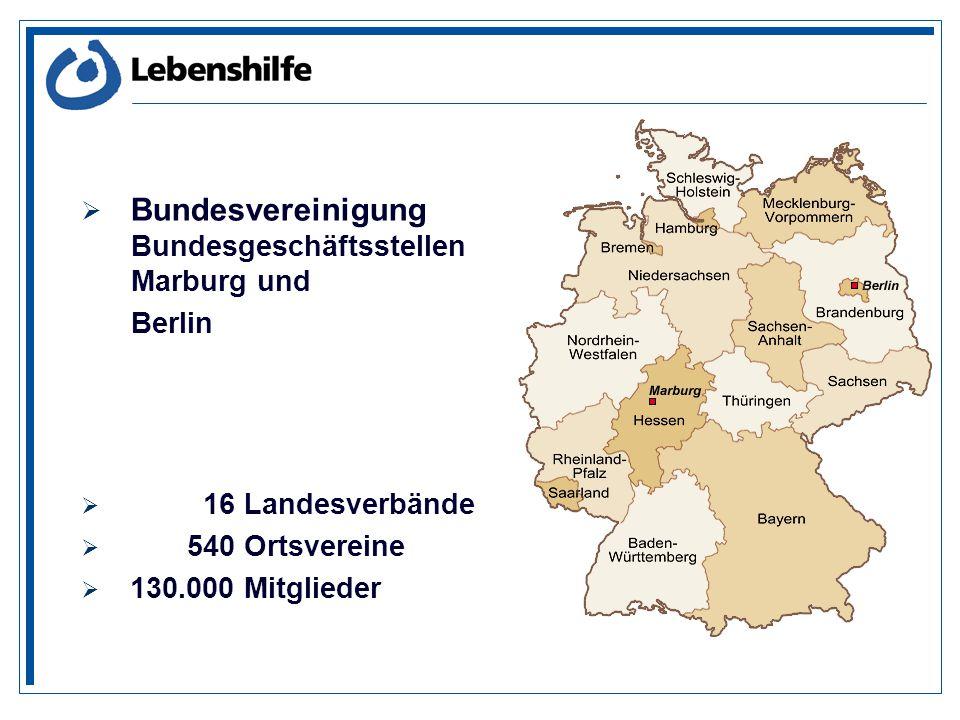 Bundesvereinigung Bundesgeschäftsstellen Marburg und Berlin 16 Landesverbände 540 Ortsvereine 130.000 Mitglieder