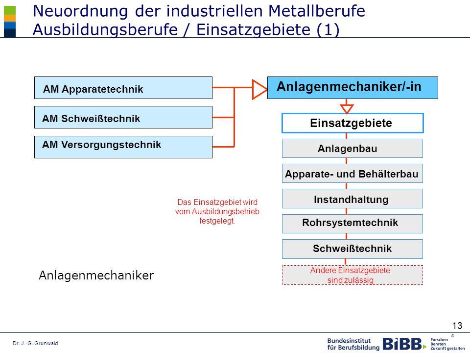 Dr. J.-G. Grunwald ® 13 Neuordnung der industriellen Metallberufe Ausbildungsberufe / Einsatzgebiete (1) Anlagenmechaniker AM Apparatetechnik AM Schwe