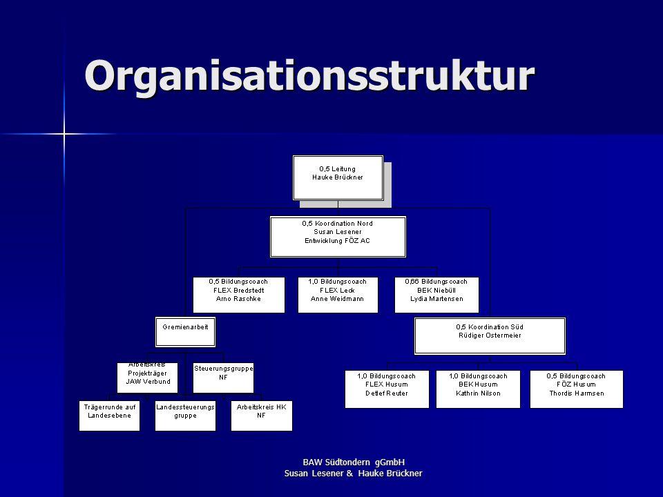BAW Südtondern gGmbH Susan Lesener & Hauke Brückner Arbeitsmarkteffekte: Im Rahmen des Coachings und der Koordination des Projektes entstanden 6 quali