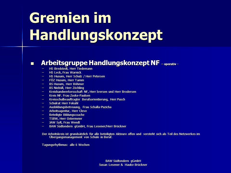 BAW Südtondern gGmbH Susan Lesener & Hauke Brückner Organisationsstruktur