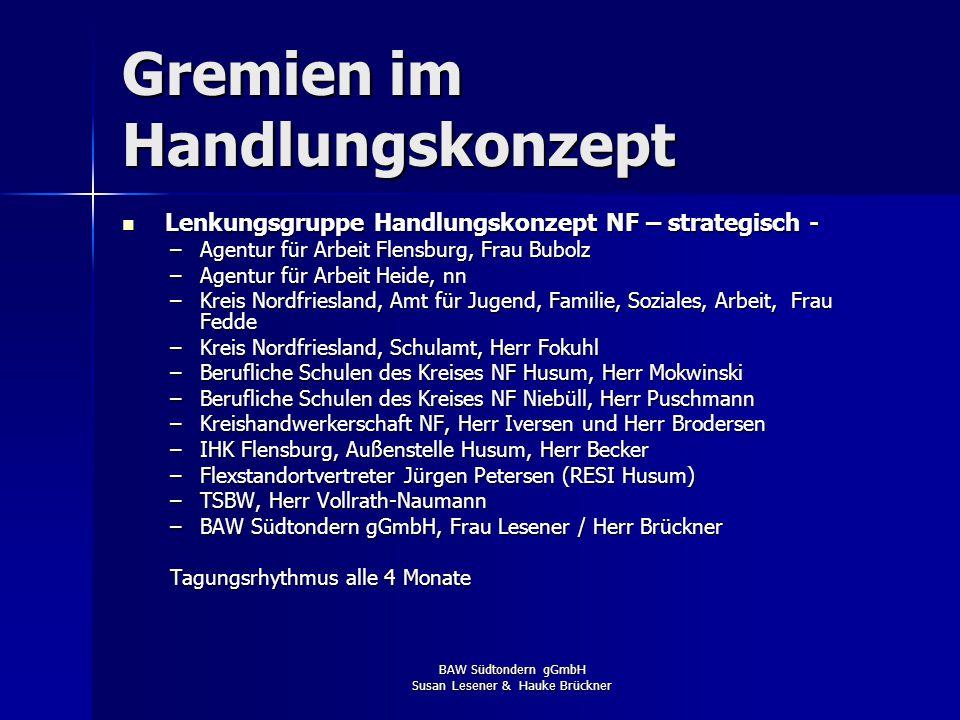 Gremien im Handlungskonzept Arbeitsgruppe Handlungskonzept NF – operativ - Arbeitsgruppe Handlungskonzept NF – operativ - –HS Bredstedt, Herr Tiedeman