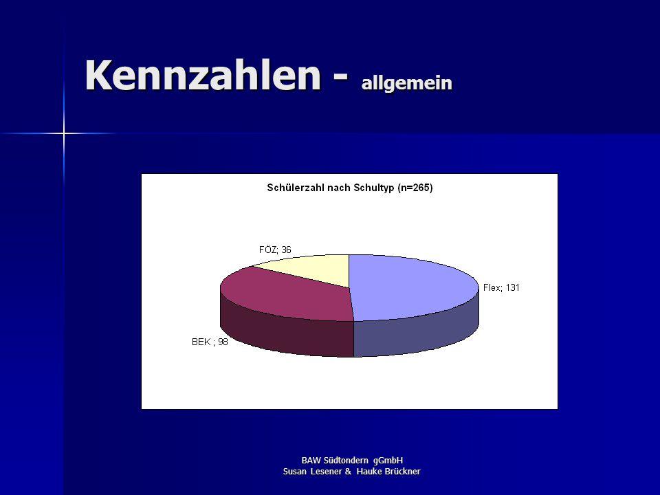 BAW Südtondern gGmbH Susan Lesener & Hauke Brückner Erfolgsmessung 2007/2008 Kann das erste Jahr als erfolgreich angesehen werden ? JAweil: